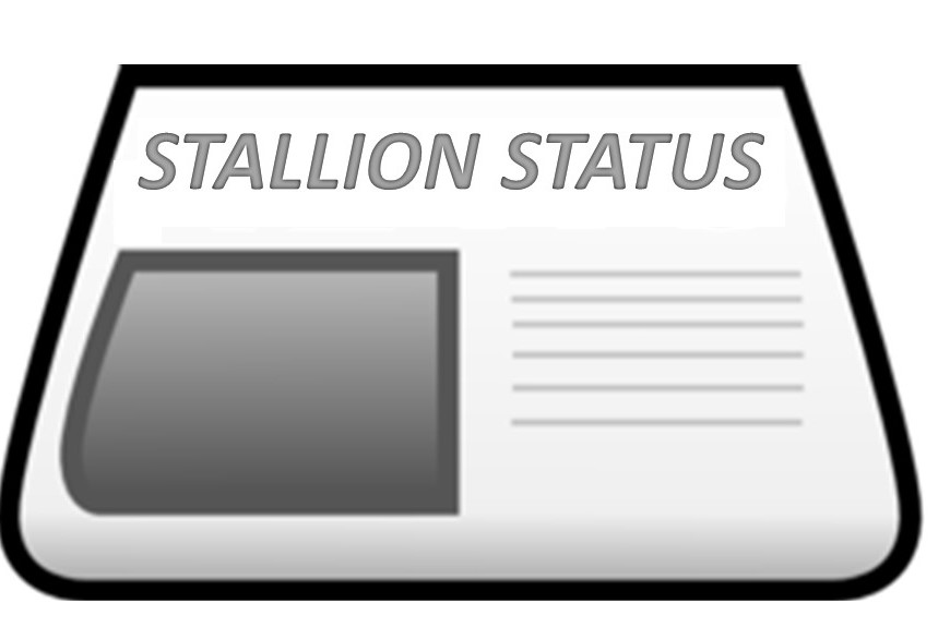 Stallion Status Newsletter
